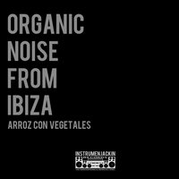 Arroz Con Vegetales — Organic Noise from Ibiza