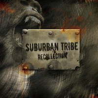 Recollection — Suburban Tribe