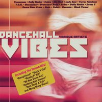 Dancehall Vibes — Various Artists - Jamdown Records