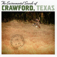 The Enviornmental Sounds of Crawford Texas — Pep Ventura