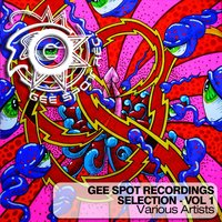 Gee Spot Recordings Selection, Vol. 1 — сборник