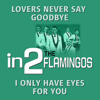 in2The Flamingos - Volume 1 — The Flamingos