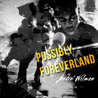 Possibly Foreverland — Andre Wilson