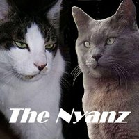The Nyanz — The Nyanz