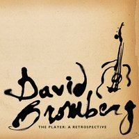 The Player: A Retrospective — David Bromberg