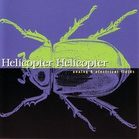 Analog & Electrical Fields — Helicopter Helicopter