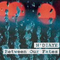 Between Our Fates — N'Diaye