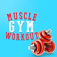 Muscle Gym Workout — Gym Workout