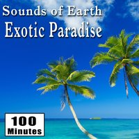 Sounds of Earth: Exotic Paradise — Звуки природы