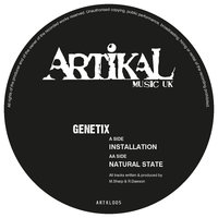 Installation / Natural State — Genetix
