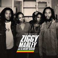 The Best Of Ziggy Marley & The Melody Makers — Ziggy Marley And The Melody Makers