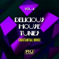 Delicious House Tunes, Vol. 4 (Substantial House) — сборник