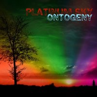 Ontogeny — Platinum Sky