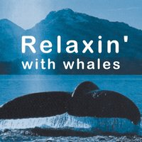 Relaxin' With Whales — Walton Ornato