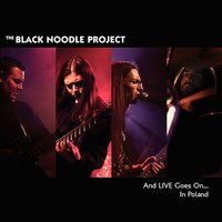 And Live Goes On... In Poland — The Black Noodle Project