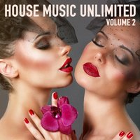 House Music Unlimited, Vol. 2 (From Dusk Till Dawn) — сборник
