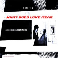 What Does Love Mean — Igor Merlini