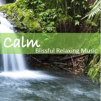Calm: Blissful Relaxing Music — сборник