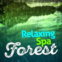 Relaxing Spa: Forest — Forest Sounds Relaxing Spa Music Singing Birds