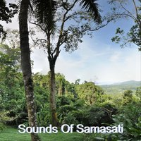 Sounds of Samasati — Henry Rowland