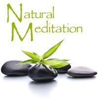 Natural Meditation: Peaceful Music for Yoga, Meditation & Relaxation — Meditation