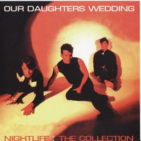 Nightlife - The Collection — Our Daughter's Wedding