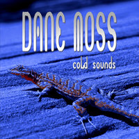 Cold Sounds — Dane Moss