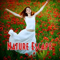 Nature Escape: Music and Nature Sounds for Relaxing Meditation and Yoga — Meditation Spa