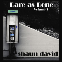 Bare As Bone Volume 1 — Shaun David