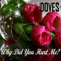 Why Did You Hurt Me? — The Doves