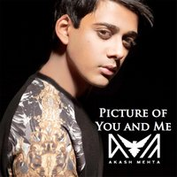 Picture of You and Me — Akash Mehta