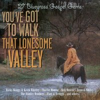 You've Got to Walk That Lonesome Valley - 27 Bluegrass Gospel Gems — сборник