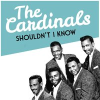 Shouldn't I Know — The Cardinals