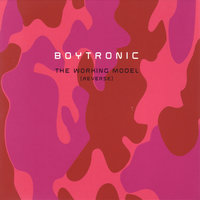 The Working Model (Reverse) — Boytronic