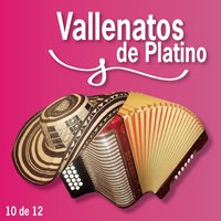 Vallenatos De Platino Vol. 10 — сборник