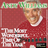 The Most Wonderful Time Of The Year — Andy Williams