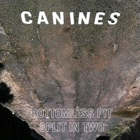 Bottomless Pit | Split in Two — Canines