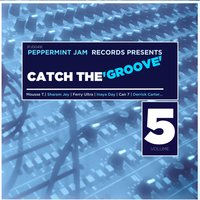 Peppermint Jam Records Pres., Catch the Groove, Vol. 5 — сборник