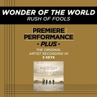 Wonder Of The World (Premiere Performance Plus Track) — Rush Of Fools