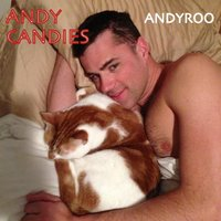 Andy Candies — Andyroo