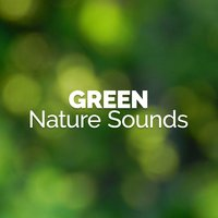 Green Nature Sounds — Green Nature Spa