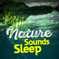 Nature Sounds Sleep — Nature Sounds Sleep