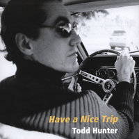 Have a Nice Trip — Todd Hunter