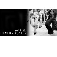 Soul & R&B: The Whole Story, Vol. 16 — сборник