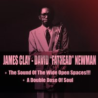 The Sound Of The Wide Open Spaces!!! / A Double Dose Of Soul — Джордж Гершвин, James Clay, David Fathead Newman, James Clay, David Fathead Newman