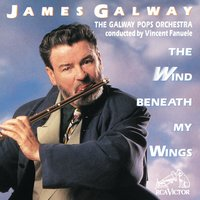 The Wind Beneath My Wings — James Galway