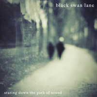 Staring Down the Path of Sound — Black Swan Lane