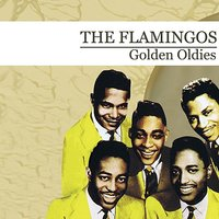 Golden Oldies — The Flamingos