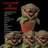 The Little Shop of Horrors — Seymour