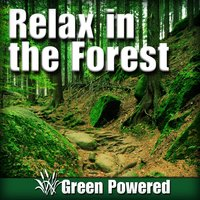 Relax in the Forest (Nature Sound) — Green Powered